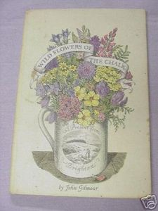 Wild Flowers of the Chalk 1947 Booklet John Gilmour
